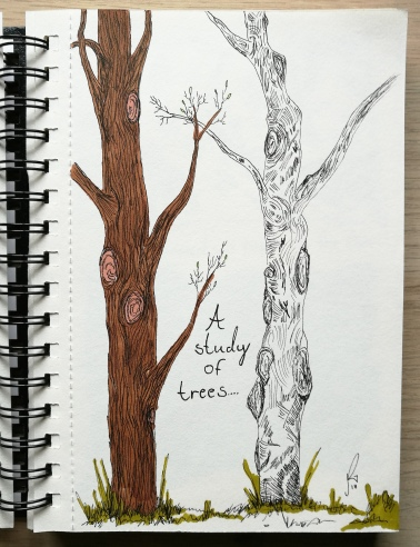 A study of trees (Felt pen + marker)