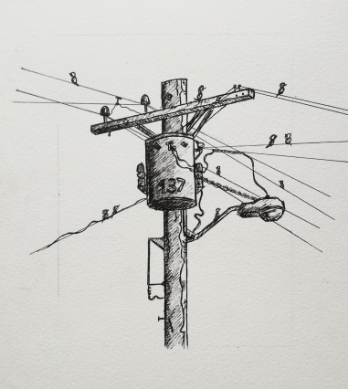 A worn powerline